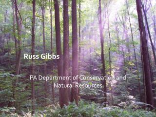 Russ Gibbs