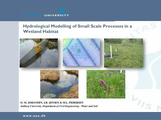 Hydrological Modelling of Small Scale Processes in a Wetland Habitat