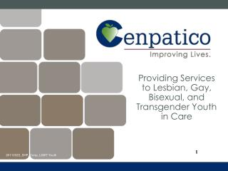 Providing Services to Lesbian, Gay, Bisexual, and Transgender Youth in Care