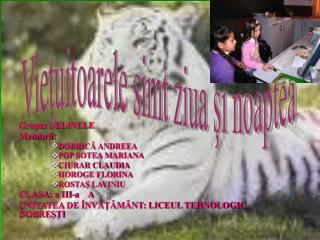 Grupa: FELINELE Membrii: DOBRICĂ ANDREEA POP SOTEA MARIANA CIURAR CLAUDIA HOROGE FLORINA ROSTAŞ LAVINIU CLASA : a III-a