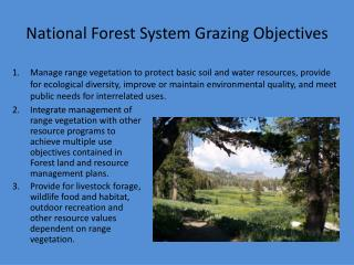 National Forest System Grazing Objectives