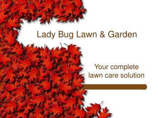 Lady Bug Lawn & Garden