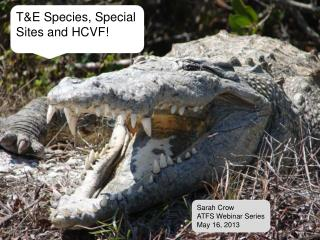 T&E Species, Special Sites and HCVF!