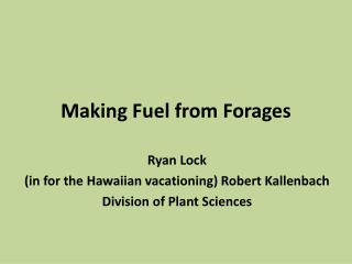 Making Fuel from Forages