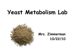 Yeast Metabolism Lab