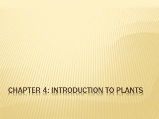 Chapter 4: INTRODUCTION TO PLANTS