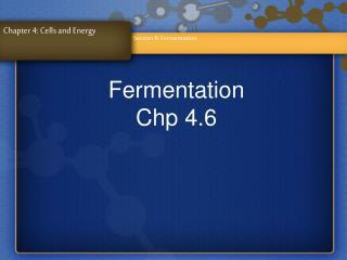 Fermentation Chp 4.6