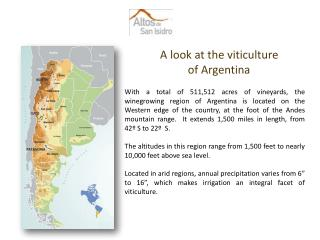 A look at the viticulture  of Argentina