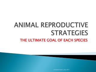 ANIMAL REPRODUCTIVE STRATEGIES