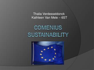 Comenius Sustainability