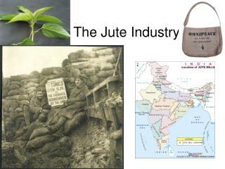 The Jute Industry