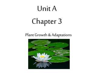 Unit A Chapter 3