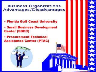 Business Organizations Advantages/Disadvantages