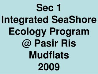 Sec 1  Integrated SeaShore Ecology Program @ Pasir Ris Mudflats 2009