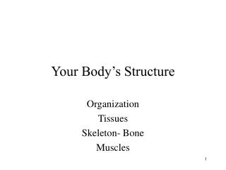Your Body's Structure