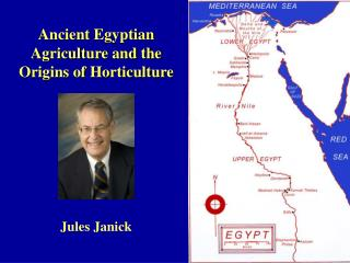 Ancient  Egyptian Agriculture and the Origins of Horticulture