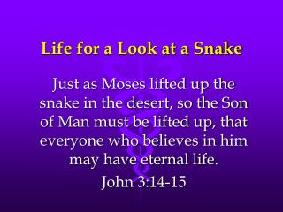 Life for a Look at a Snake