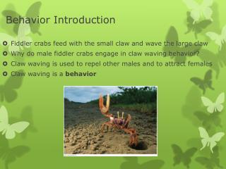 Behavior Introduction