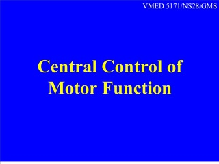 Central Control of Motor Function