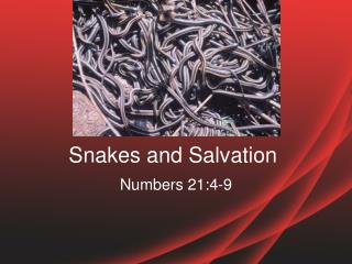 Snakes  and  Salvation