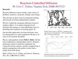Reaction-Controlled Diffusion PI: Uwe C. T ä uber, Virginia Tech, DMR-0075725