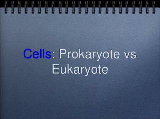 Cells : Prokaryote vs Eukaryote