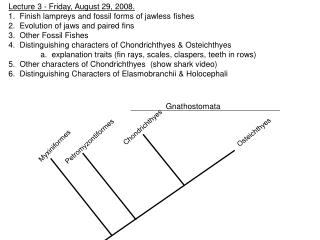 Lecture 3 - Friday, August 29, 2008. 1.  Finish lampreys and fossil forms of jawless fishes 2.  Evolution of jaws and p