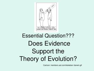 Essential Question  Does Evidence  Support the  Theory of Evolution