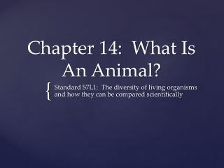 Chapter 14:  What Is An Animal?