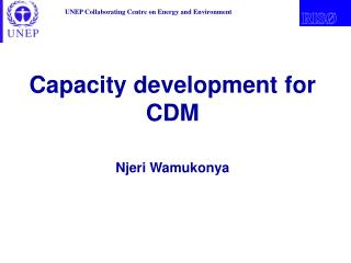 Capacity development  for CDM Njeri Wamukonya