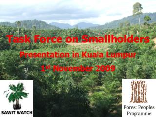 Task Force on Smallholders Presentation in Kuala Lumpur 1 st  November 2009
