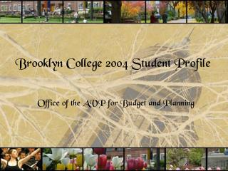 Brooklyn College 2004 Student Profile