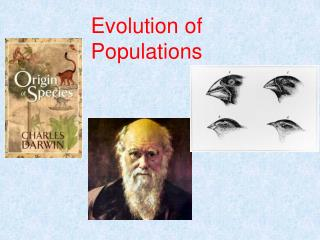Evolution of Populations
