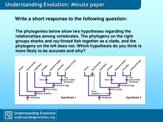 Understanding Evolution: Minute paper