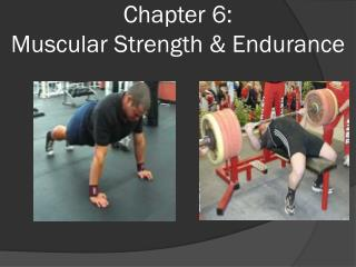 Chapter 6:  Muscular Strength & Endurance