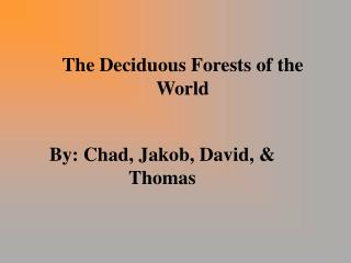 The Deciduous Forests of the World