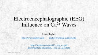 Electroencephalographic (EEG) Influence on Ca 2+  Waves
