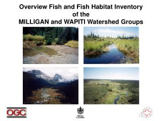 Overview Fish and Fish Habitat Inventory of the MILLIGAN and WAPITI Watershed Groups