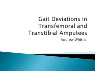 Gait Deviations in  Transfemoral  and Transtibial Amputees