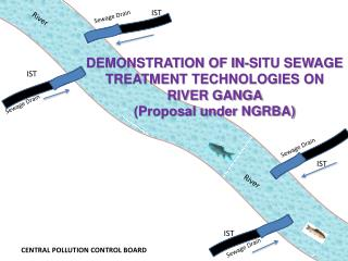 DEMONSTRATION OF IN-SITU SEWAGE TREATMENT TECHNOLOGIES ON RIVER GANGA  (Proposal under NGRBA)