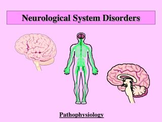 Neurological System Disorders