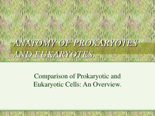 ANATOMY OF PROKARYOTES AND EUKARYOTES.