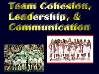 Team Cohesion, Leadership, & Communication