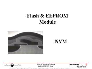 Flash & EEPROM Module