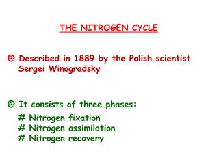 THE NITROGEN CYCLE @ Described i n 1889 by the Polish scientist     Sergei Winogradsky  @ It consists of three phases: