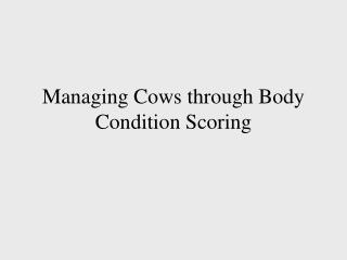 Managing Cows through Body Condition Scoring