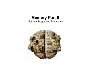 Memory Part II Memory Stages and Processes