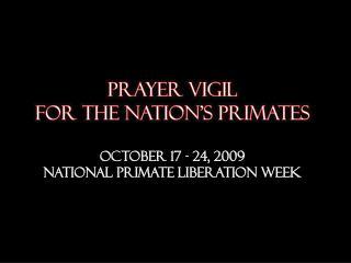 prayer  vigil  for the nation's primates  October 17 - 24, 2009 National Primate liberation week