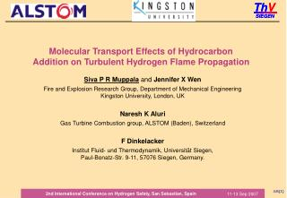 Molecular Transport Effects of Hydrocarbon Addition on Turbulent Hydrogen Flame Propagation