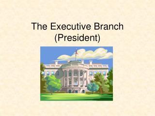 The Executive Branch (President)